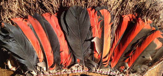 Feather headdresses